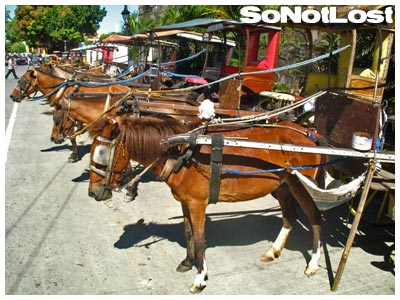 Kalesas Outside Vigan Cathedral - Click to View Hi-Res Image
